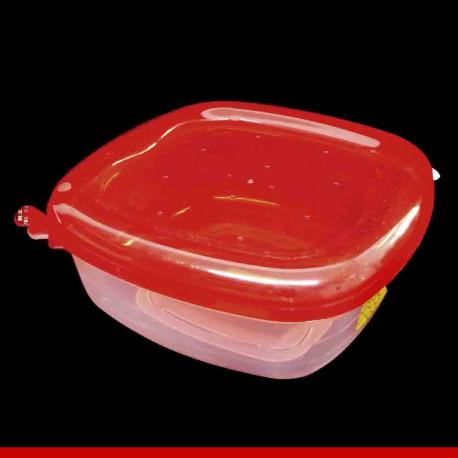 Tupperware 2 tamanhos - Produtos para casa